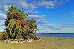 Estepona, Trésor Andalou de la Costa Del Sol